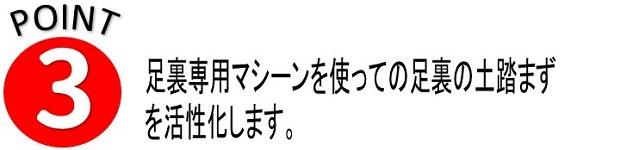 外反母趾こだわり1-5 (4).jpg
